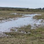 La pluie s'impose et la sécheresse régresse