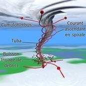 Tuba, trombe, tornade et mini-tornade : quelles différences ?