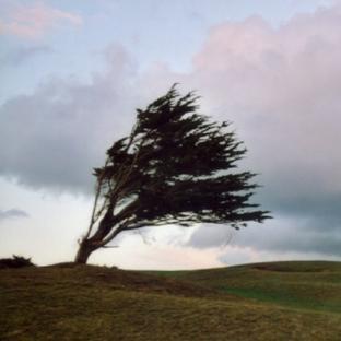 Fort vent de Sud et autan à l'avant d'une dégradation
