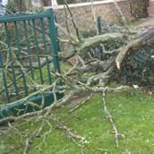 Tempête et coup de vent Ruzika lundi 8 février