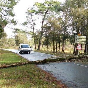 Le vent et l'orage occasionnent de nombreux dégâts sur l'Ouest