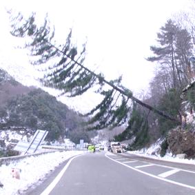 Sud-Est : les vents forts font 2 blessés et des dégâts