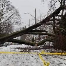 Tempête, neige et verglas au Canada et Nord des Etats-Unis
