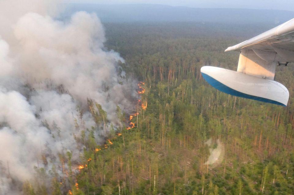 Image d'illustration pour Chaleur et incendies en Sibérie : un risque pour le climat mondial ?