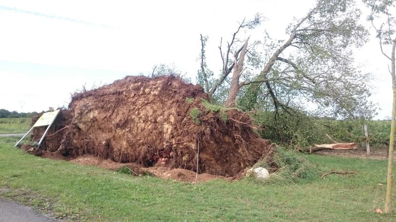 Image d'illustration pour Orages meurtriers et tornades : bilan du passage de l'ex tempête Henri