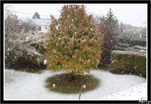 Loiret sous la neige - 30 octobre 2008