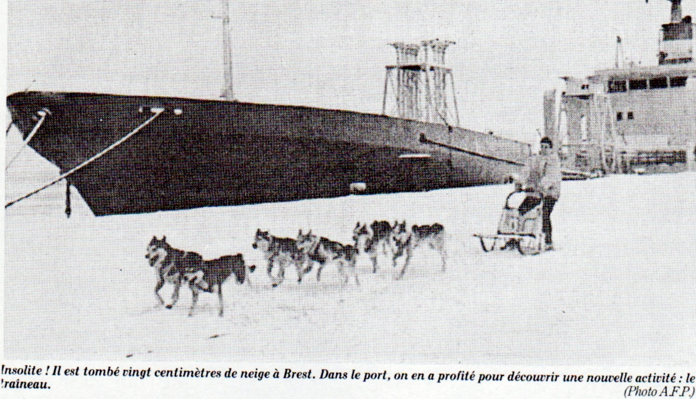 Image d'illustration pour Décembre froid : promesse d'un hiver glacial?