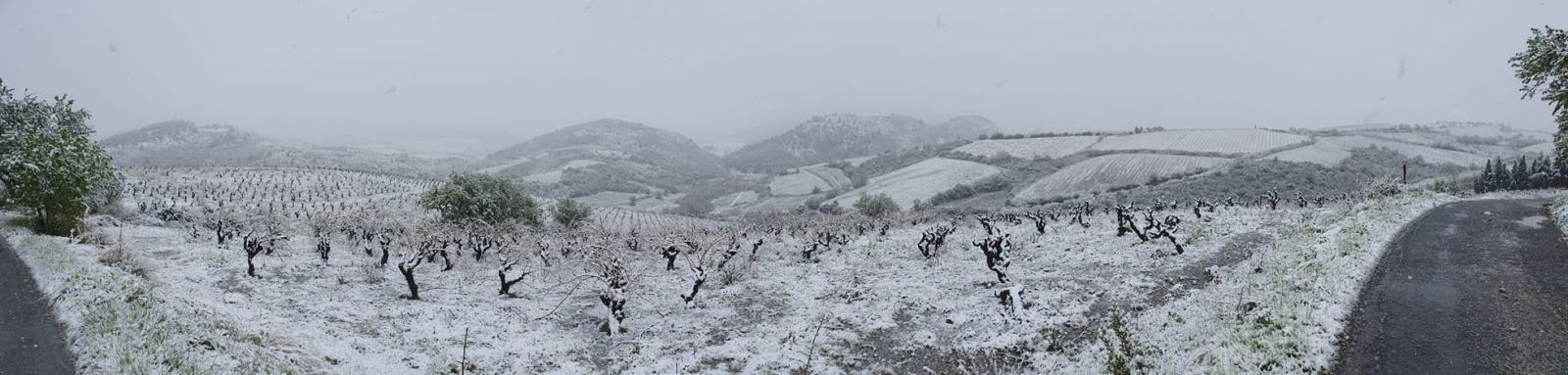 Image d'illustration pour Episode de froid tardif sur le pays en ce début de Printemps