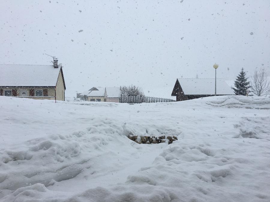 a005047ea Chutes de neige à Bois d Armont (Jura - 1050m) - vendredi 1er mars 2019 -  Infoclimat