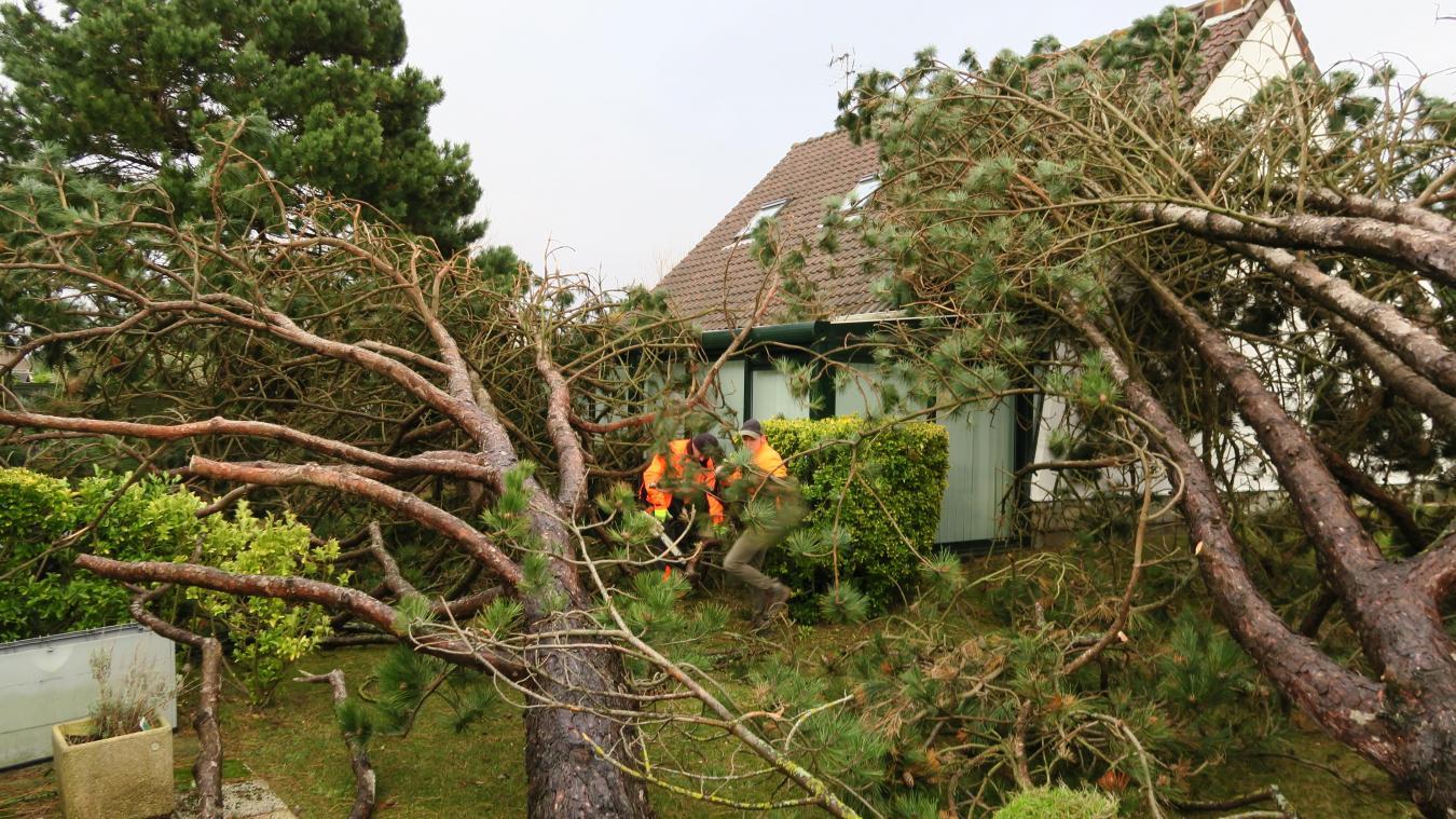 Image d'illustration pour Bilan de la tempête Nannette sur le Nord-Ouest