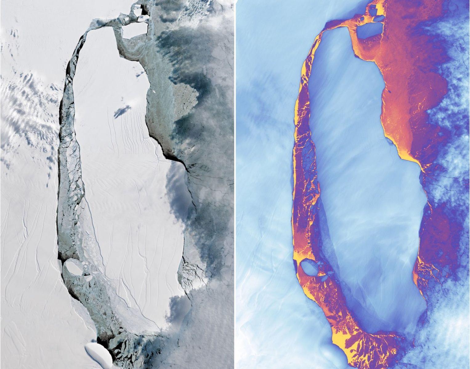 Image d'illustration pour Banquise Antarctique : un maximum annuel exceptionellement bas