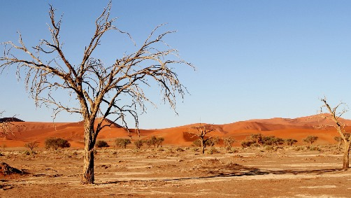 Image d'illustration pour Réchauffement et changement climatique - Veille documentaire