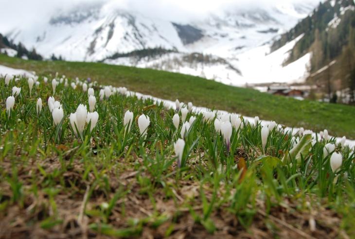Image d'illustration pour La durée d'enneigement se réduit à l'automne et au printemps