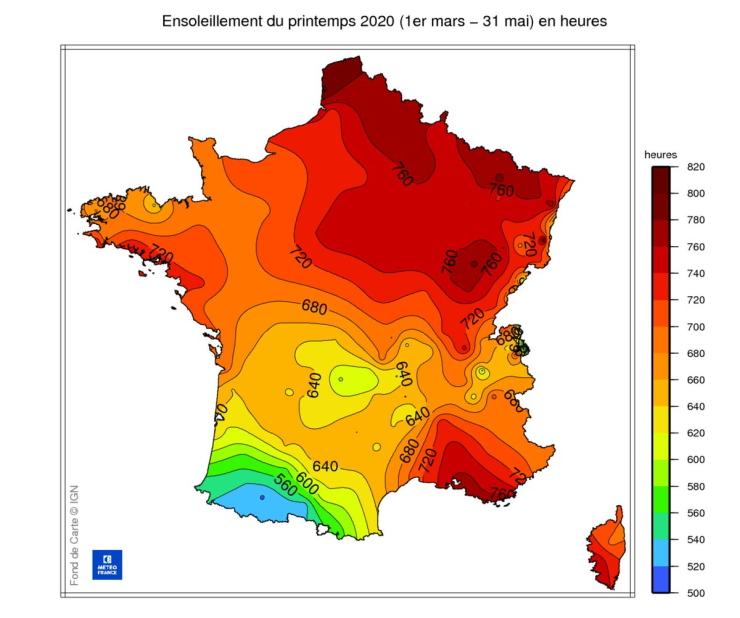 Image d'illustration pour La météo de 2020 responsable de l'invasion de guêpes en France