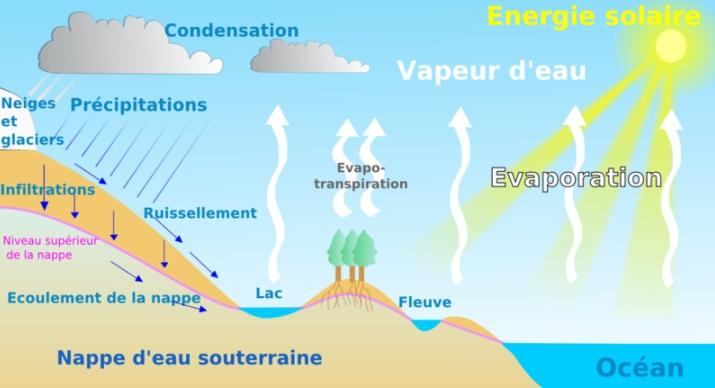 Image d'illustration pour Juin pourri, été pourri ? Que dit la climatologie ?