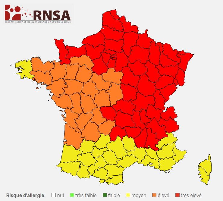 Image d'illustration pour Pollens : risques allergiques élevés dans plusieurs régions