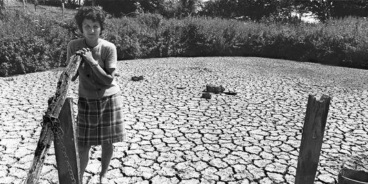 Image d'illustration pour La terrible sécheresse de 1976