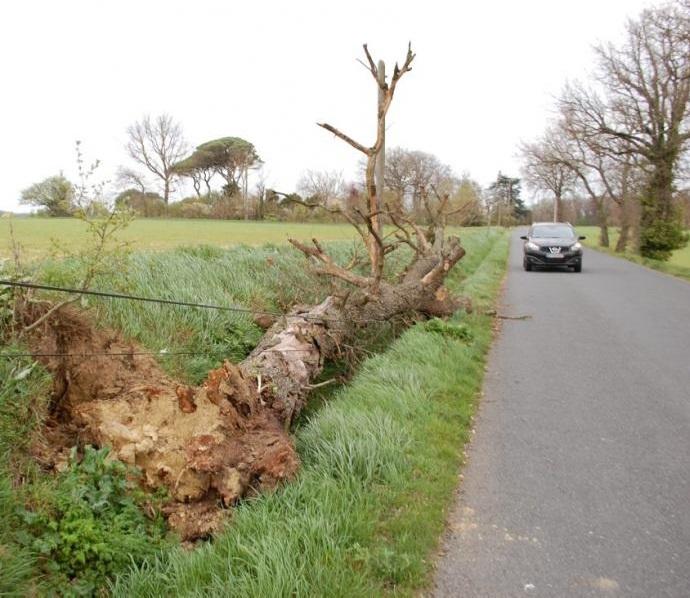 Image d'illustration pour Bilan des épisodes de vent d'autan du Roussillon au Midi Toulousain
