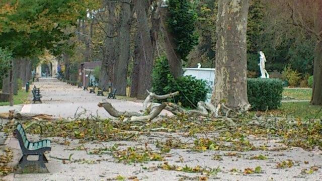 Image d'illustration pour Dépression Yorsch : autan, vent, pluie et inondations