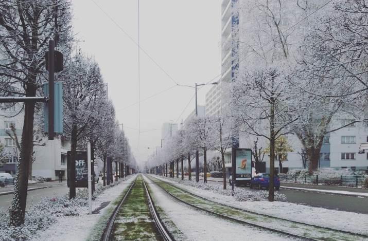 Image d'illustration pour Le plein hiver au Nord-Est - Un air de printemps au Sud
