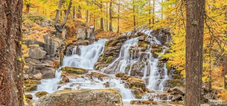 Image d'illustration pour Les dernières couleurs d'automne avant les paysages d'hiver