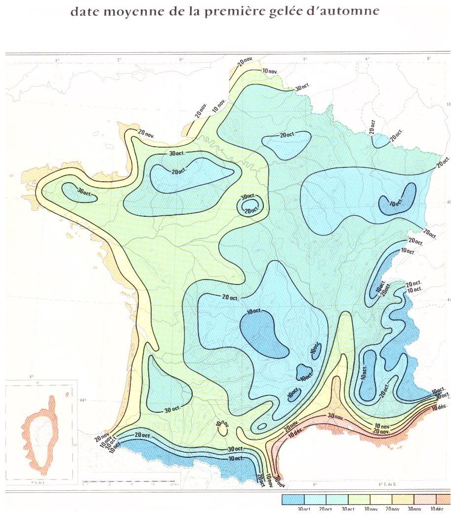 Image d'illustration pour Retour des gelées en plaine
