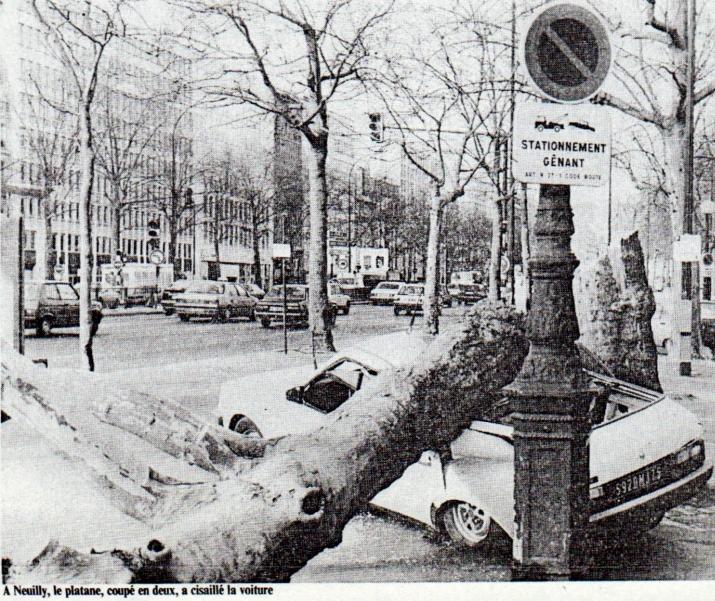 Image d'illustration pour Février 1990 : excessivement doux et tempétueux