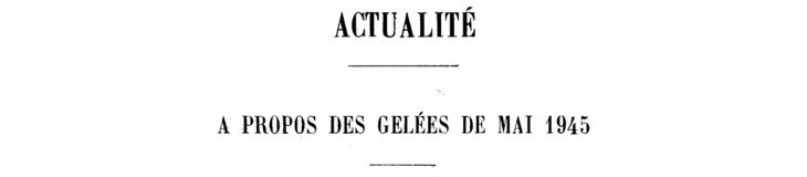 Image d'illustration pour Neige et gel les 1er mai 1945 & 1960