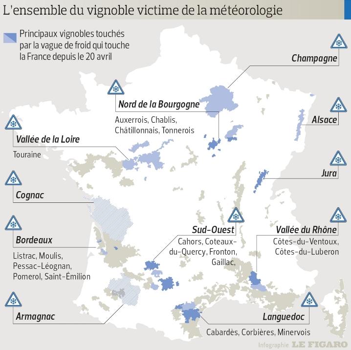 Image d'illustration pour Production viticole française en baisse à cause de la météo