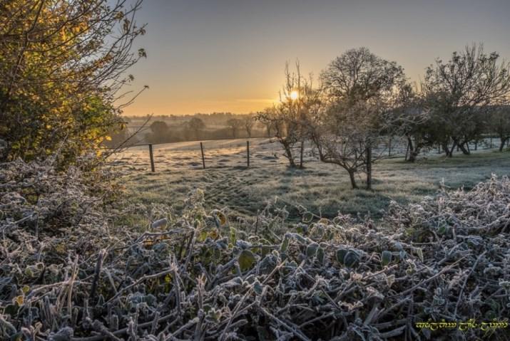 Image d'illustration pour L'automne s'affirme et les gelées s'étendent
