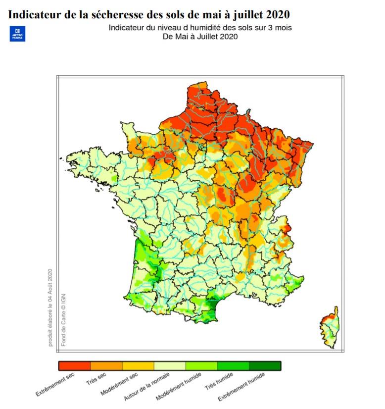 Image d'illustration pour Sécheresse et chaleur : Les forêts françaises dépérissent