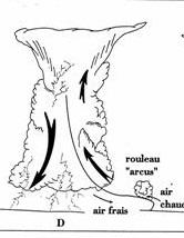 Image d'illustration pour Phénomènes orageux - le cumulonimbus