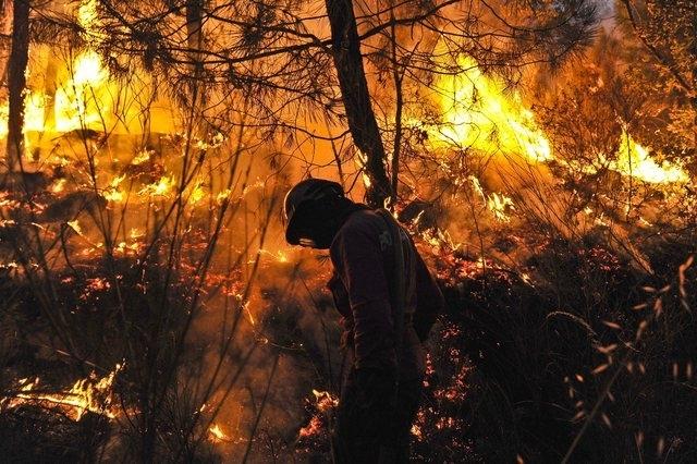 Image d'illustration pour Incendies majeurs au Portugal