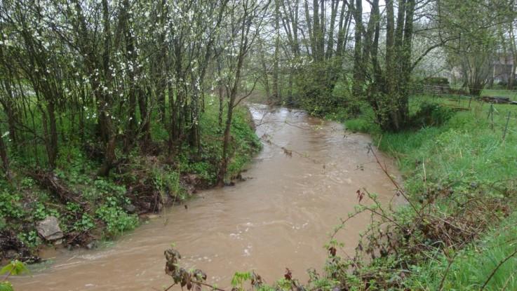 Image d'illustration pour Plus de 50 mm de pluie sur certaines régions vendredi et samedi