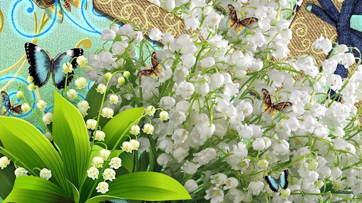 Image d'illustration pour Plus d'une semaine d'avance pour la cueillette du muguet
