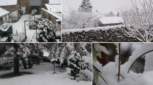 Image d'illustration pour Grêle & neige en plaine à Paris, sur l'Ile de France & le Nord de la France