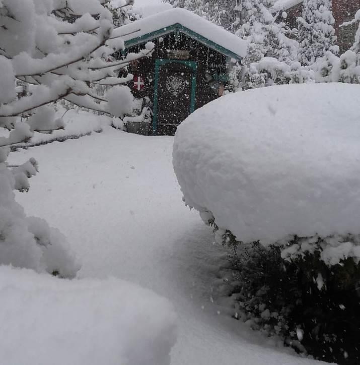 Image d'illustration pour Neige abondante en montagne & giboulées jusqu'en plaine
