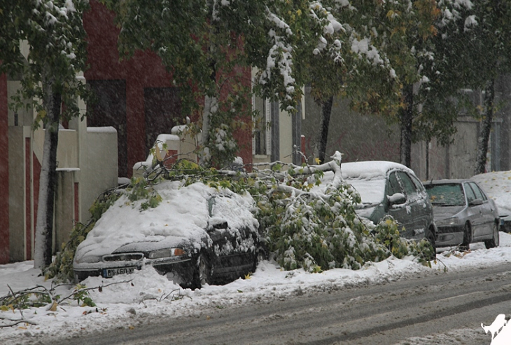 Image d'illustration pour Neige exceptionnelle à Grenoble le 28 octobre 2012