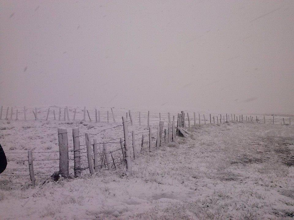 Image d'illustration pour Neige et fortes rafales de vent sur le Massif Central