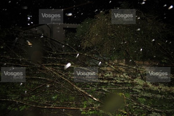 Image d'illustration pour Quatre tornades dans les Vosges et en Allemagne