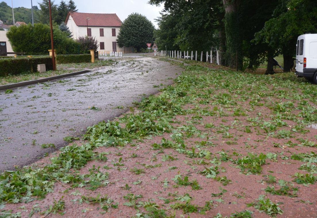 Image d'illustration pour Orage de grêle en Bourgogne - Dégâts sur les vignes - Vignobles sinistrés