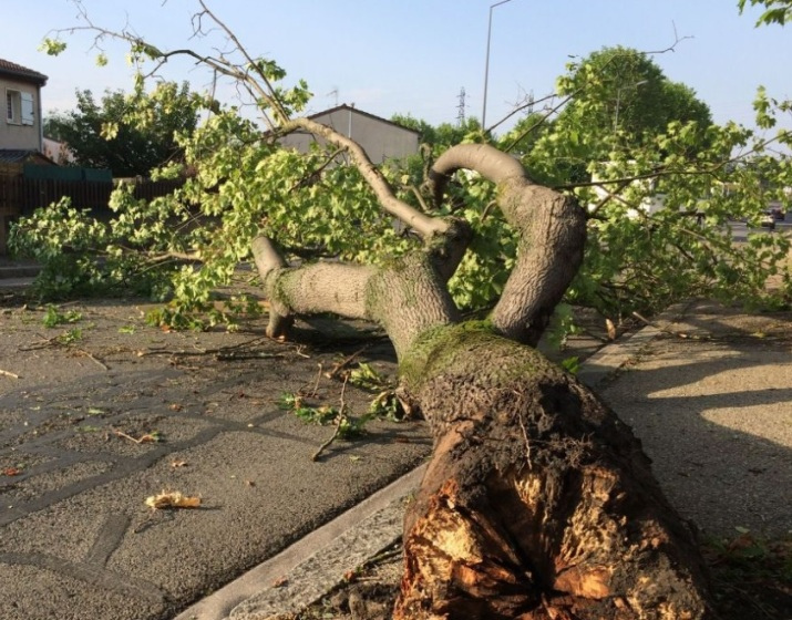 Image d'illustration pour Violents orages ce début juillet après la canicule : grêle et vent