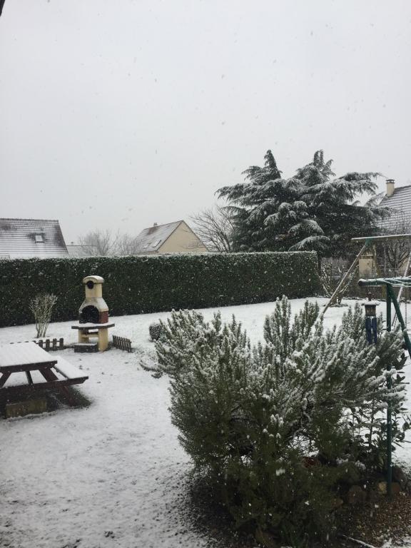 neige dans le jardin
