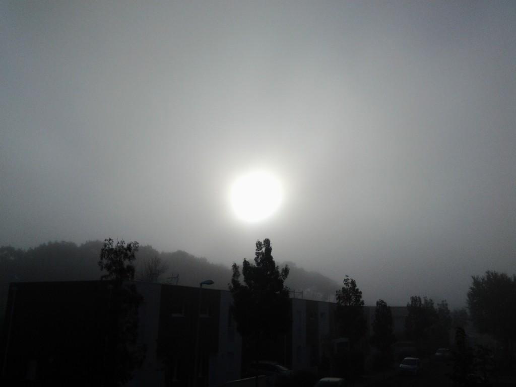 Image d'illustration pour La différence entre la brume et le brouillard