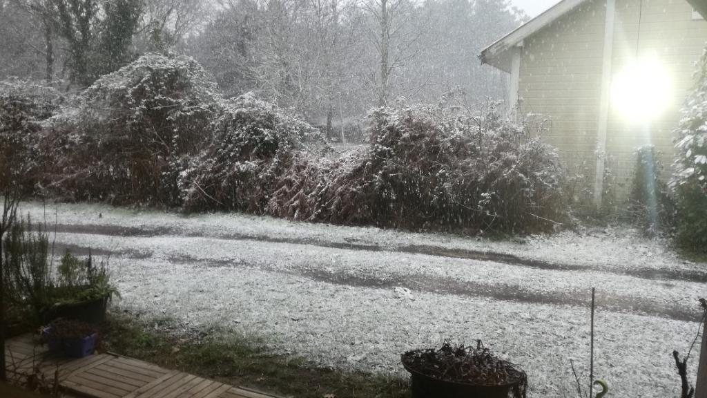 neige sur Biscarrosse