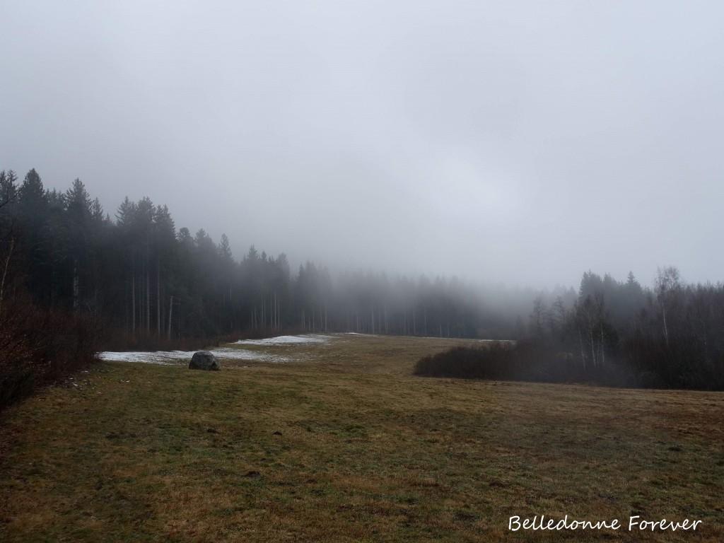 Neige fondue à 1200 m, la neige arrive enfin  A.P.