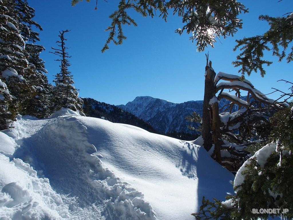 Image d'illustration pour Vacances aux sports d'hiver : enneigement et avalanche