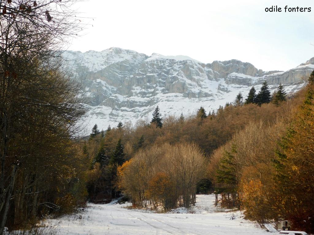 Neige et soleil au col de l'Arzelier