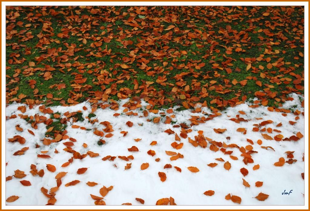 mode automne-hiver