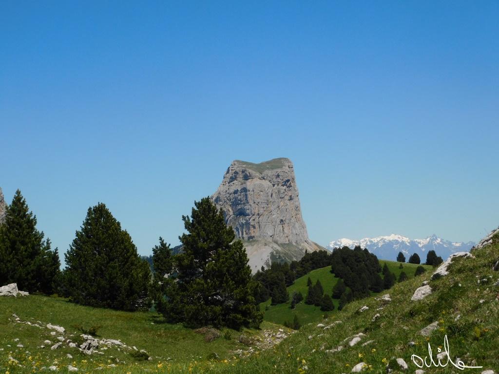 Mont-Aiguille